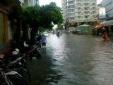Vietnam 450 : После дождичка в четверг )))